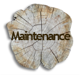 Maintenance on Trees in Saginaw